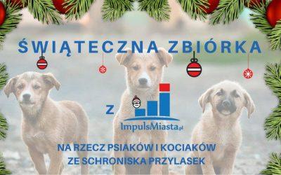 Świąteczna pomoc dla zwierzaków